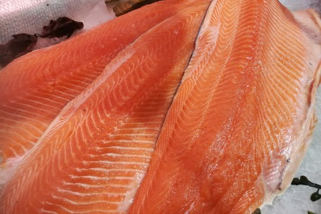 Salmon Fillets (fresh)